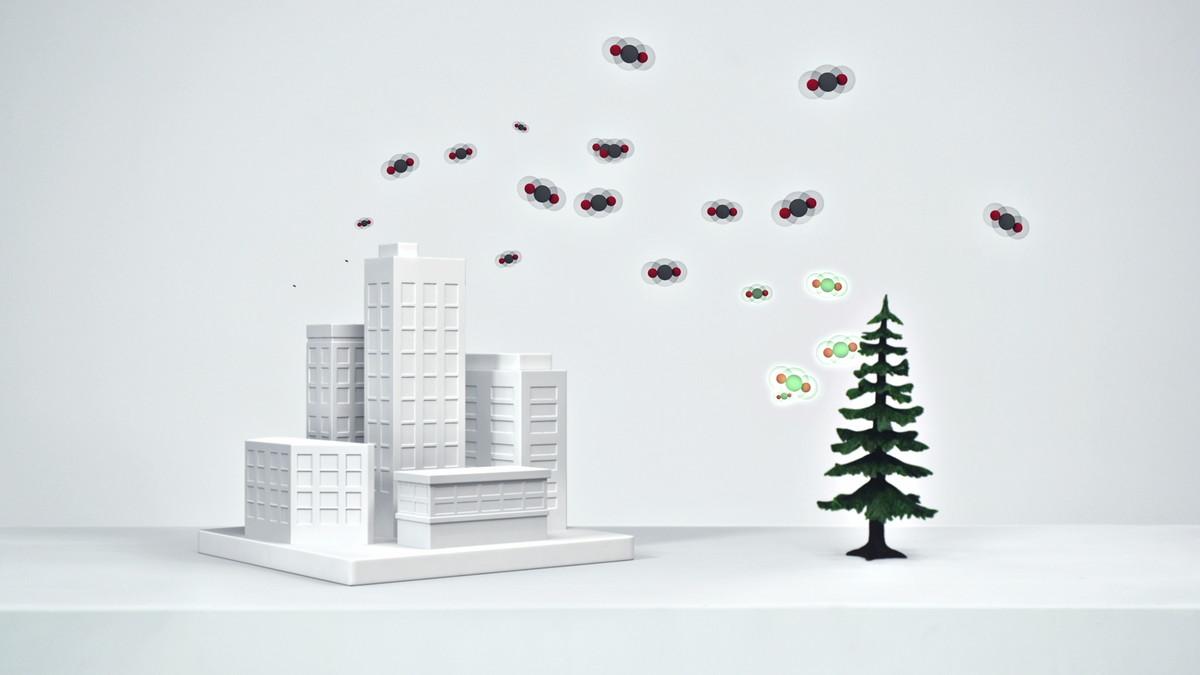 GM Carbon Stories